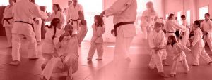 Aikido class collage